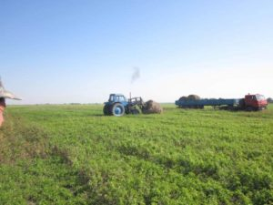 Расчет стоимости гектара земли