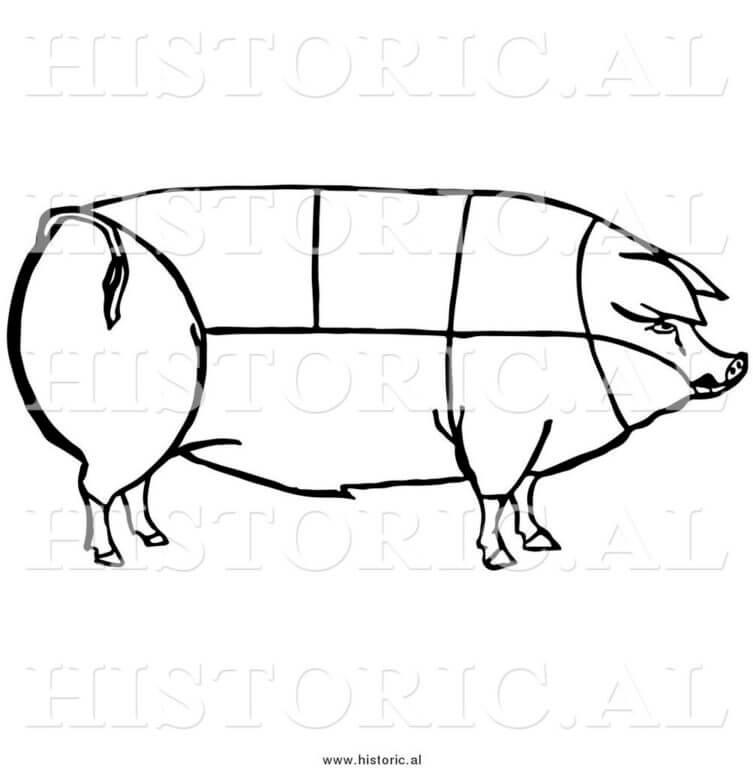Как определить вес свиньи: без весов, таблица по размерам