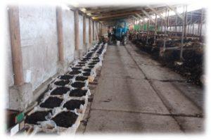 Организация производства вермикомпоста